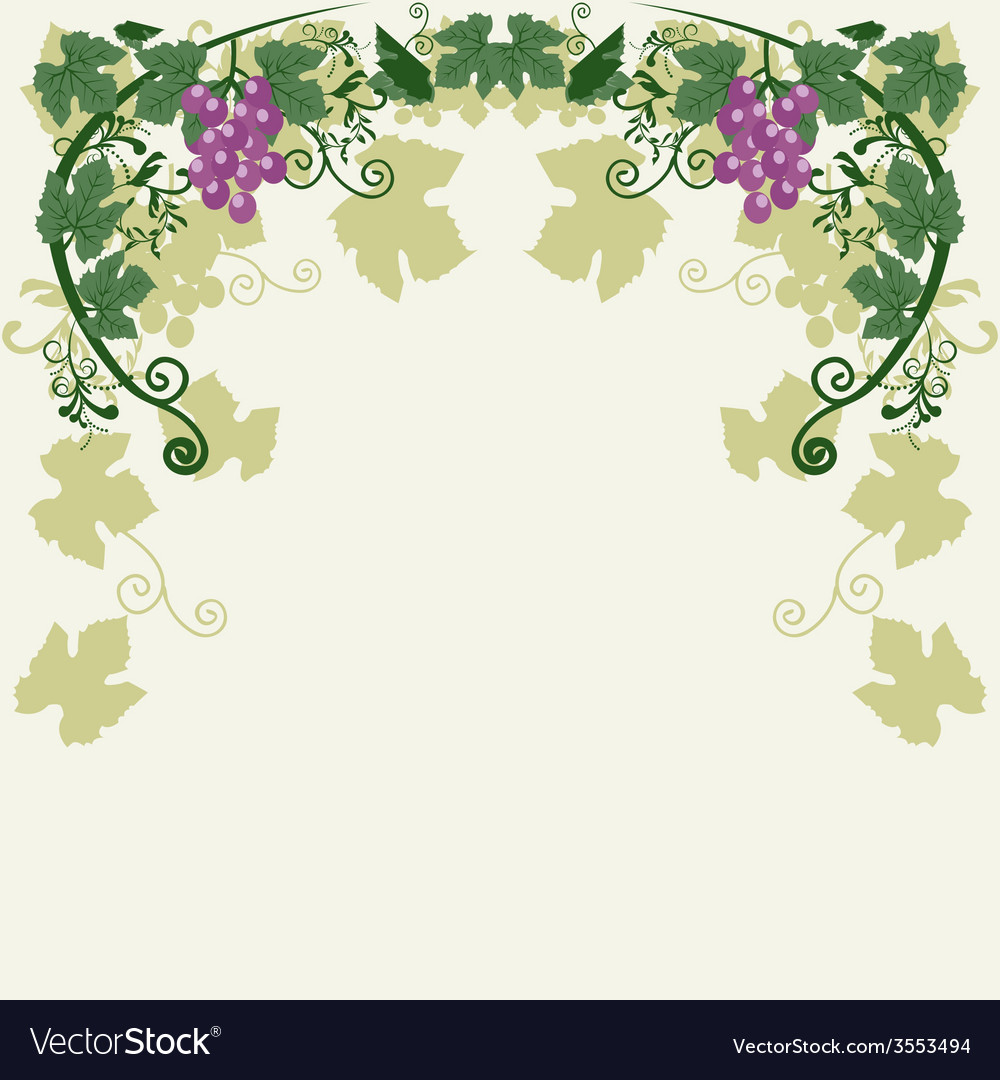 Decorative grapes vector | Price: 1 Credit (USD $1)
