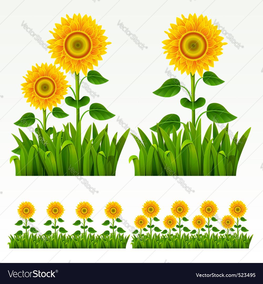Grass border vector | Price: 3 Credit (USD $3)