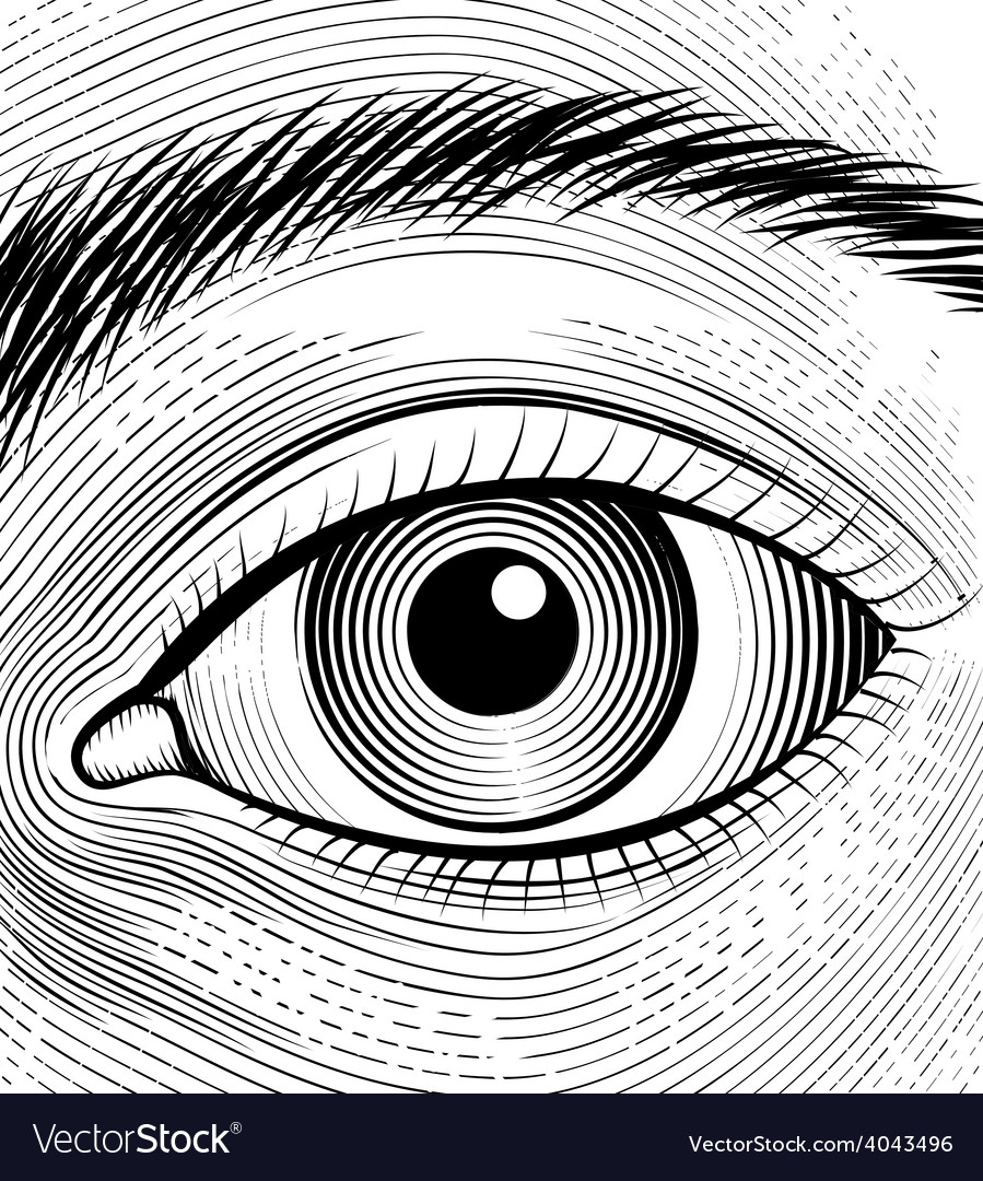 Engraving human eye vector | Price: 1 Credit (USD $1)