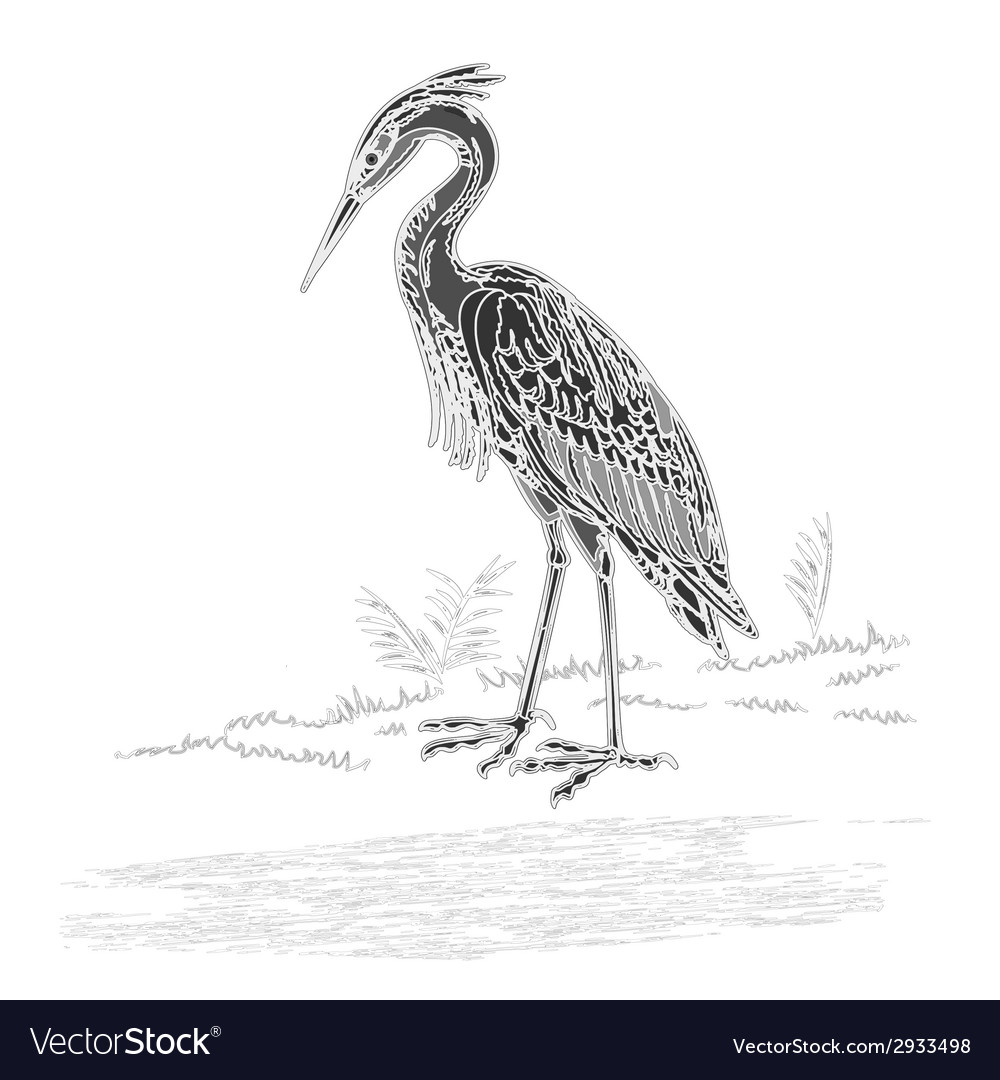 Heron vintage engraving vector | Price: 1 Credit (USD $1)