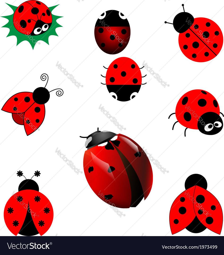 Ladybugs vector | Price: 1 Credit (USD $1)