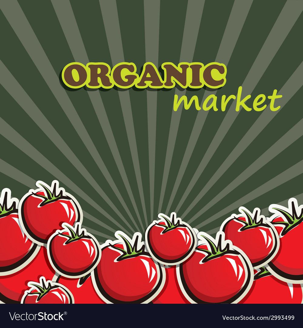 Tomatoes organic food concept vector | Price: 1 Credit (USD $1)