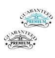 Guaranteed premium calligraphic elements vector