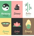 Spa mini posters set vector