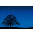 Black silhouette of old tree at night scene vector