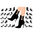 Female legs in shoes with background vector