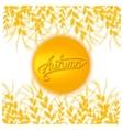 Autumn sun card vector