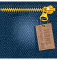Metal zipper on denim background vector