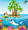 Ocean lives vector