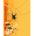 Orange halloween background with spider in web vector