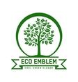 Eco emblem vector
