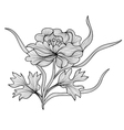 Decorative peony vector