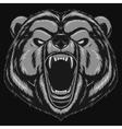 Angry bear head mascot vector