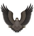 Eagle on a white background vector