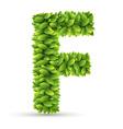 Letter f alphabet of green leaves vector