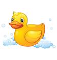 Duckling vector
