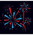 Firework at night vector