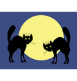 Two black cats vector