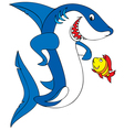 Great white shark and coral fish vector