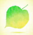 Watercolor linden leaf isolated on white vector