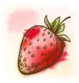 Strawberry watercolor painting vector