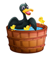 A mini pool with a duck and her ducklings vector