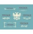 Calligraphic design elements baroque vintage set vector