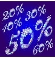 Winter sale percents vector