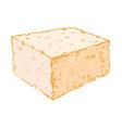 Sponge vector