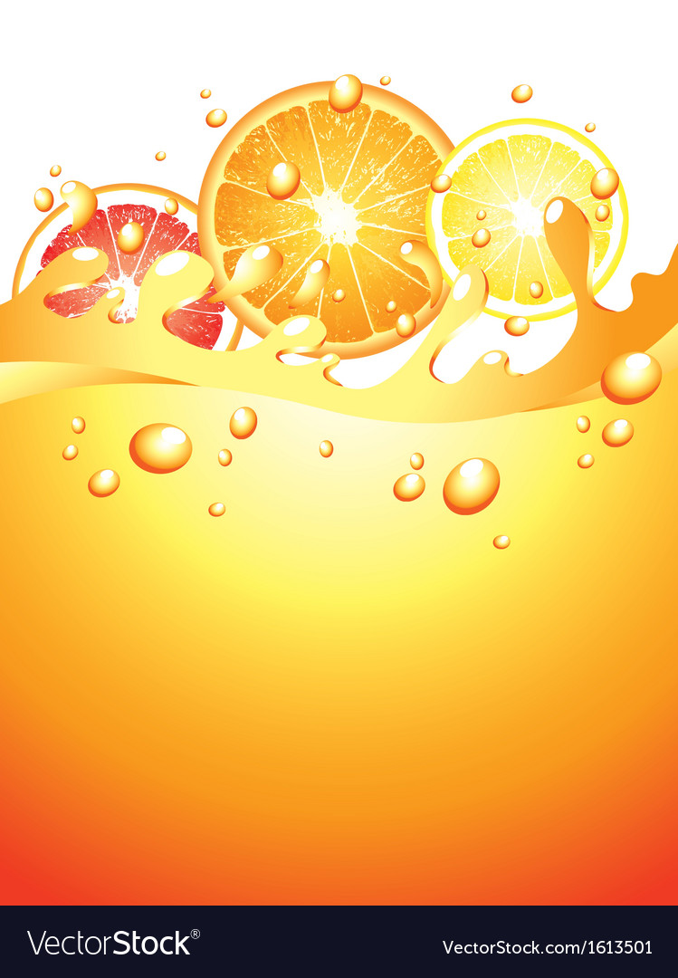 Citrus splash verticall background vector | Price: 1 Credit (USD $1)