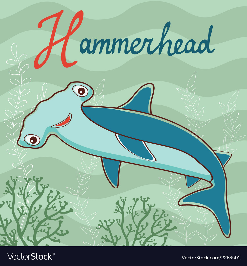 Hammerhead vector | Price: 1 Credit (USD $1)