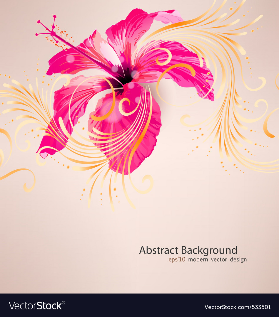 Hibiscus flower background vector | Price: 1 Credit (USD $1)