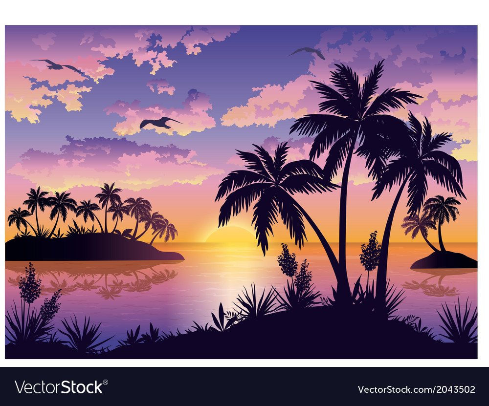 Tropical islands palms sky and birds vector | Price: 1 Credit (USD $1)