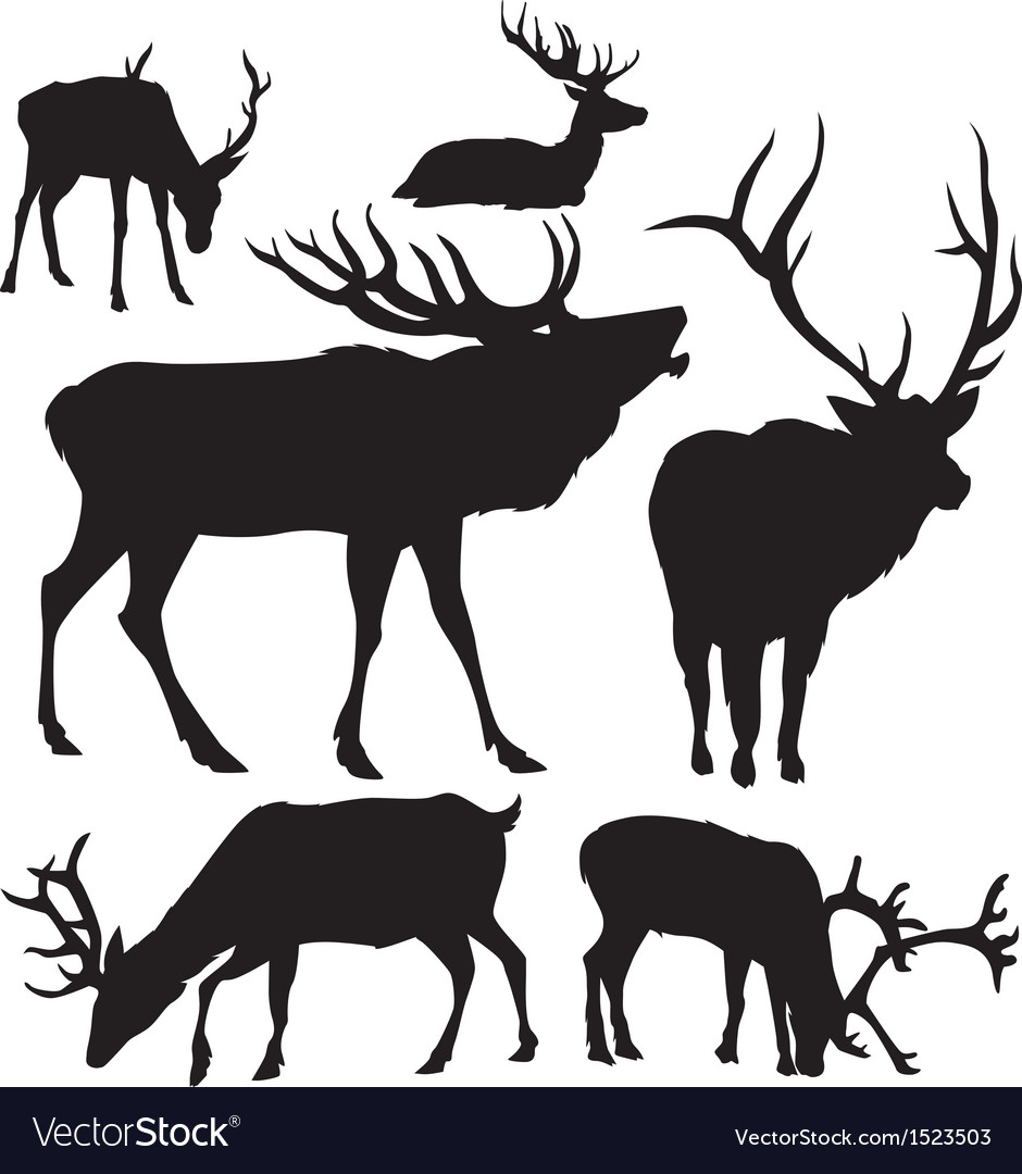 Deer silhouettes 2 vector | Price: 1 Credit (USD $1)