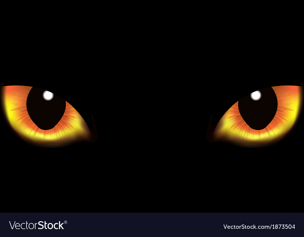 Cat eyes vector