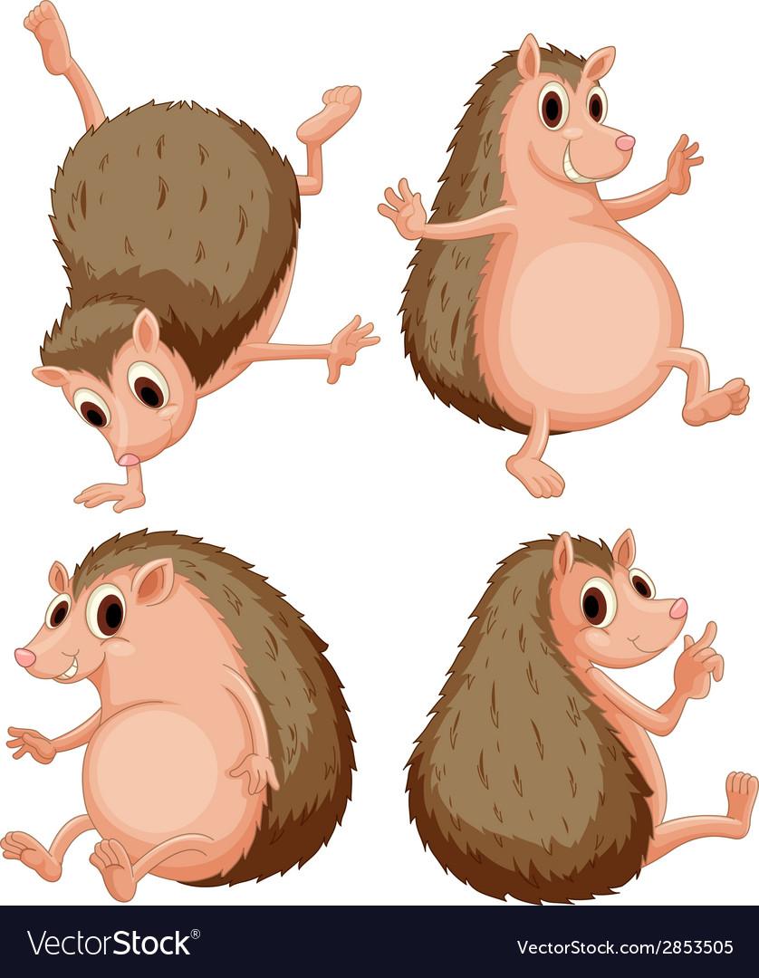 Hedgehog set vector | Price: 1 Credit (USD $1)