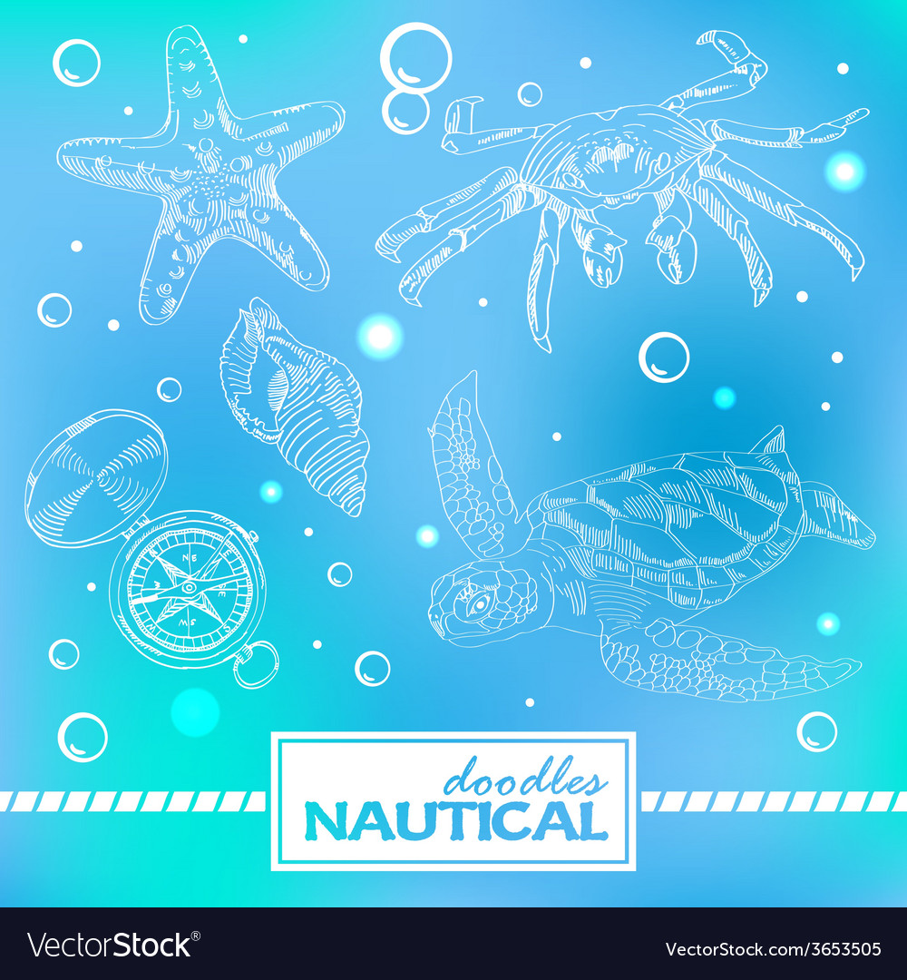 Set of nautical doodles with turtlesand crab vector | Price: 1 Credit (USD $1)