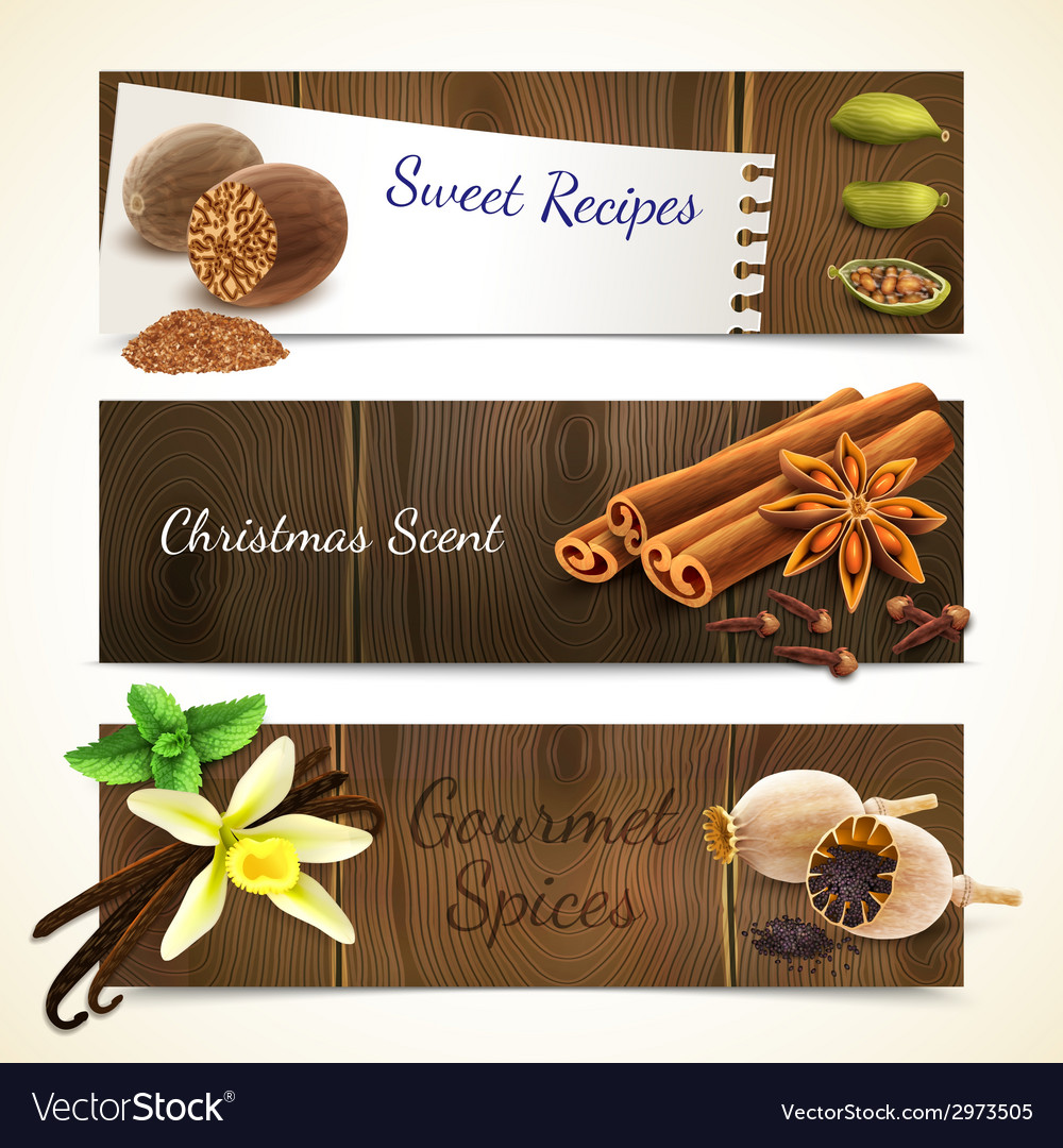 Spices banners horizontal vector | Price: 1 Credit (USD $1)