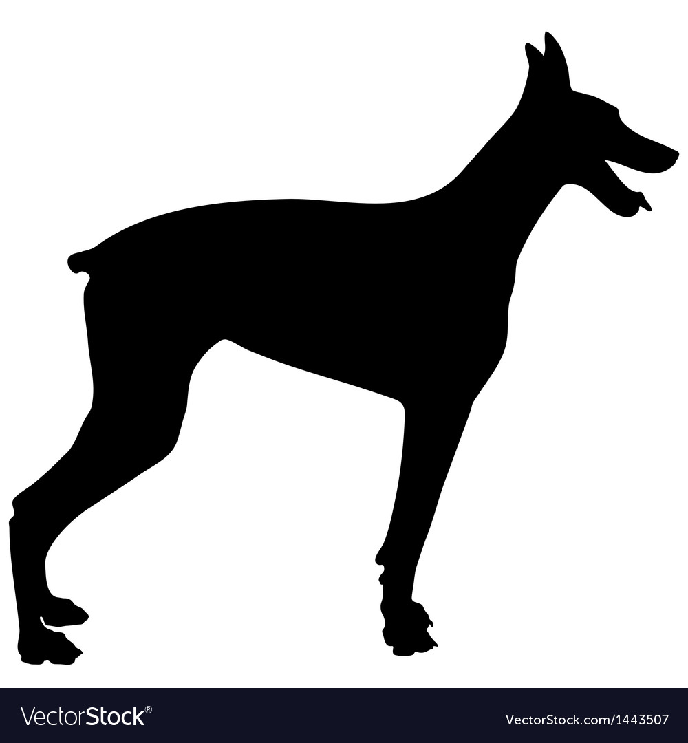 Doberman silhouette vector | Price: 1 Credit (USD $1)