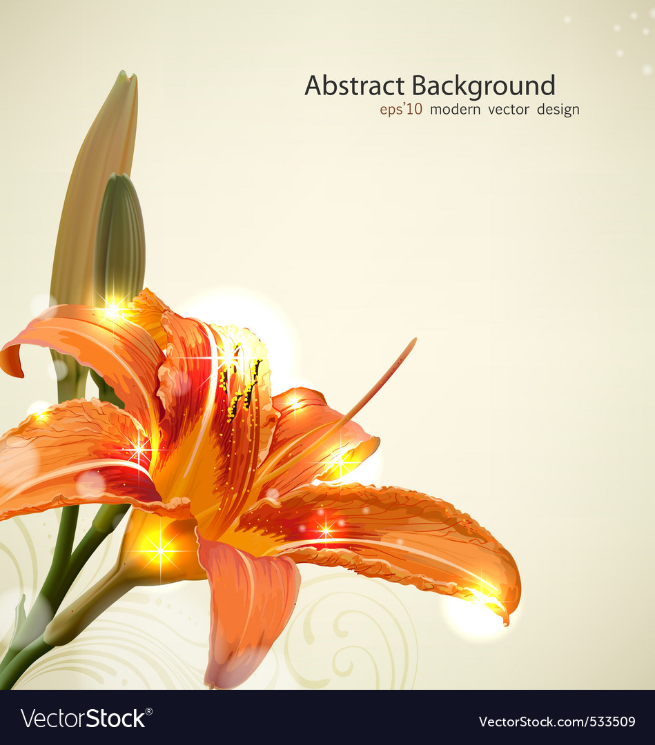 Lily flower background vector | Price: 3 Credit (USD $3)