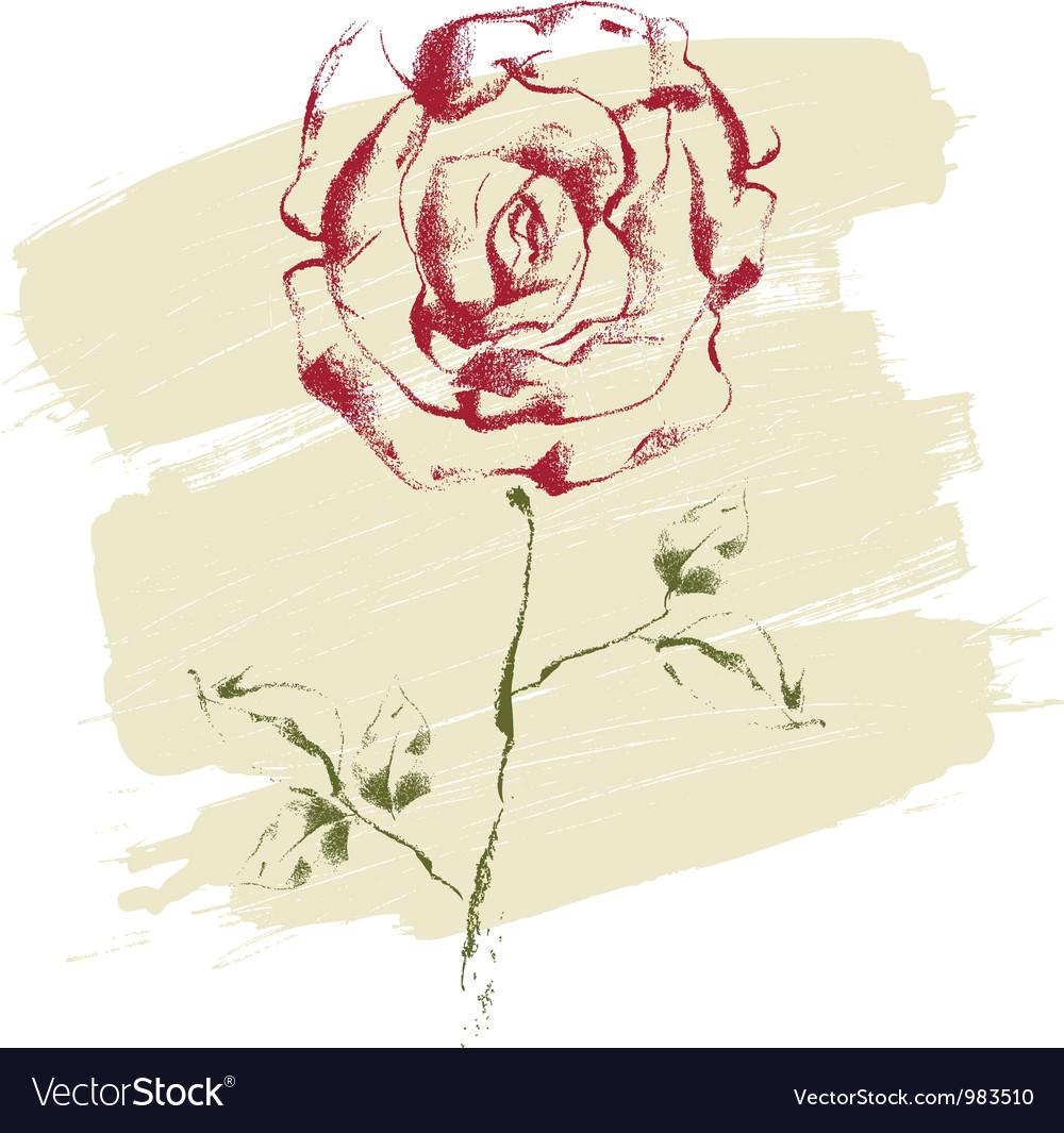 Hand drawn rose vector | Price: 1 Credit (USD $1)
