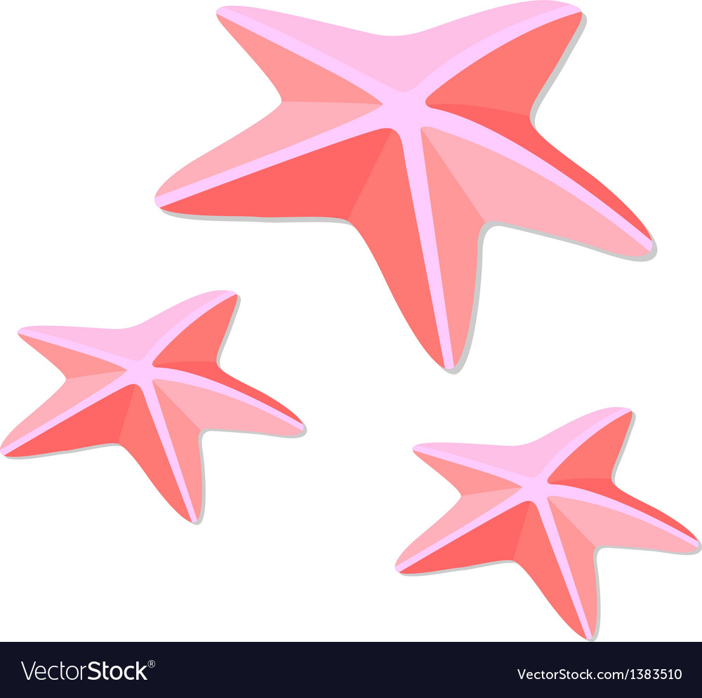 Icon starfish vector | Price: 1 Credit (USD $1)
