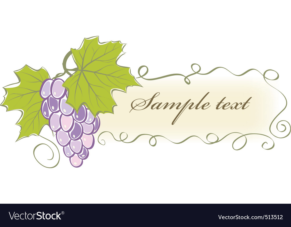 Vintage banner with grapes and leaves vector | Price: 1 Credit (USD $1)