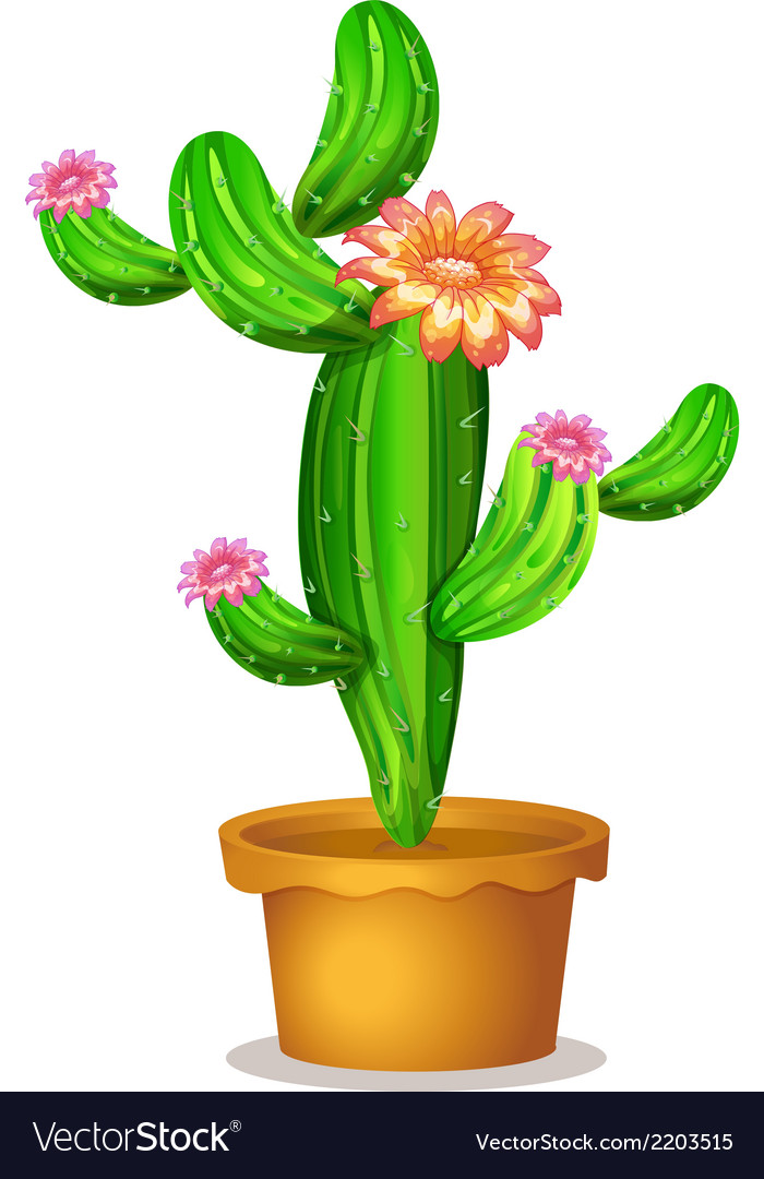 A pot with a flowering cactus plant vector | Price: 1 Credit (USD $1)