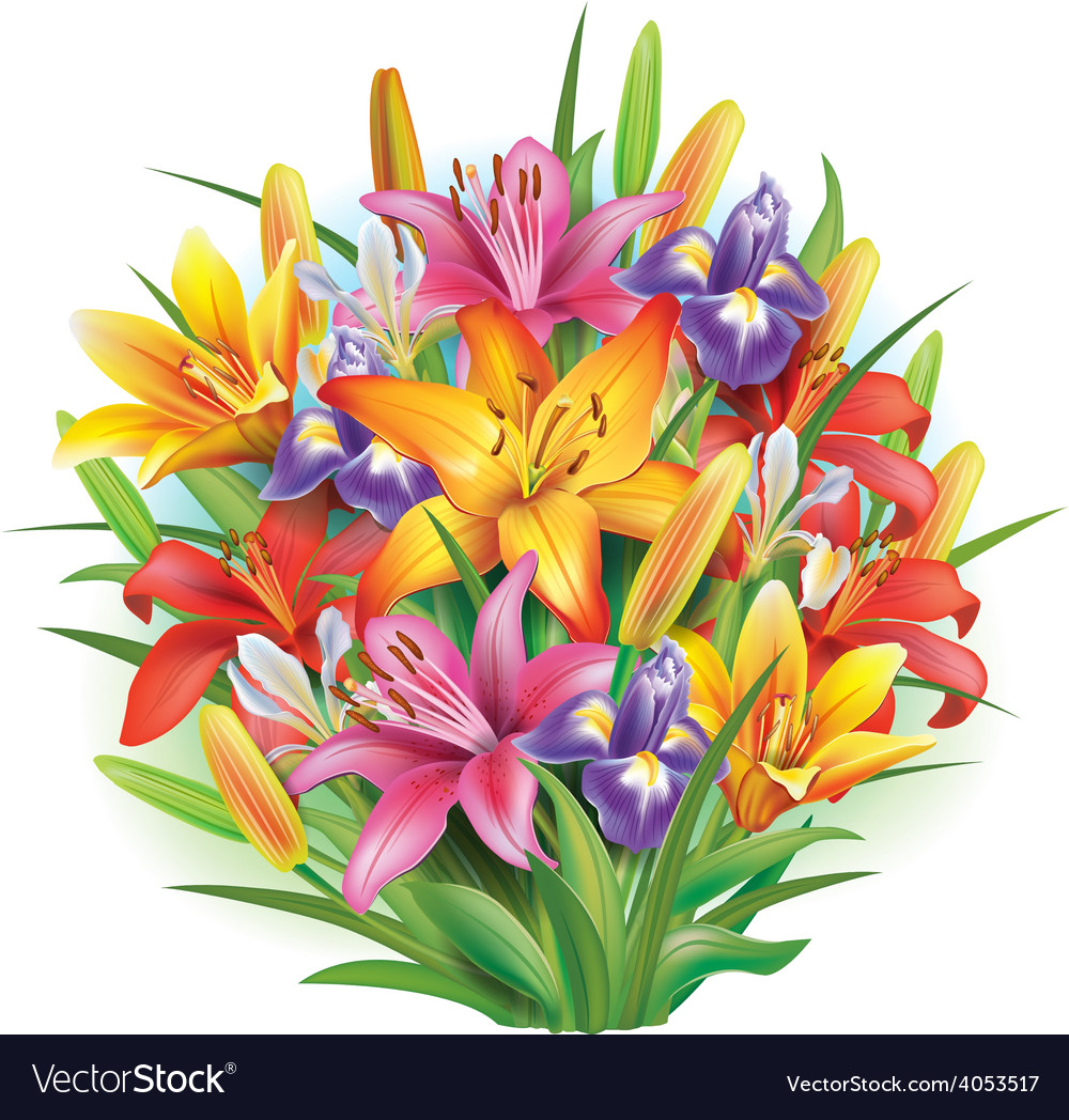 Bouquet of lilies and irises vector | Price: 3 Credit (USD $3)