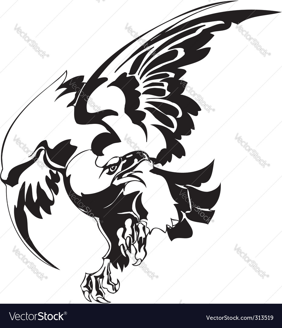 Eagle  predatory bird vector | Price: 1 Credit (USD $1)