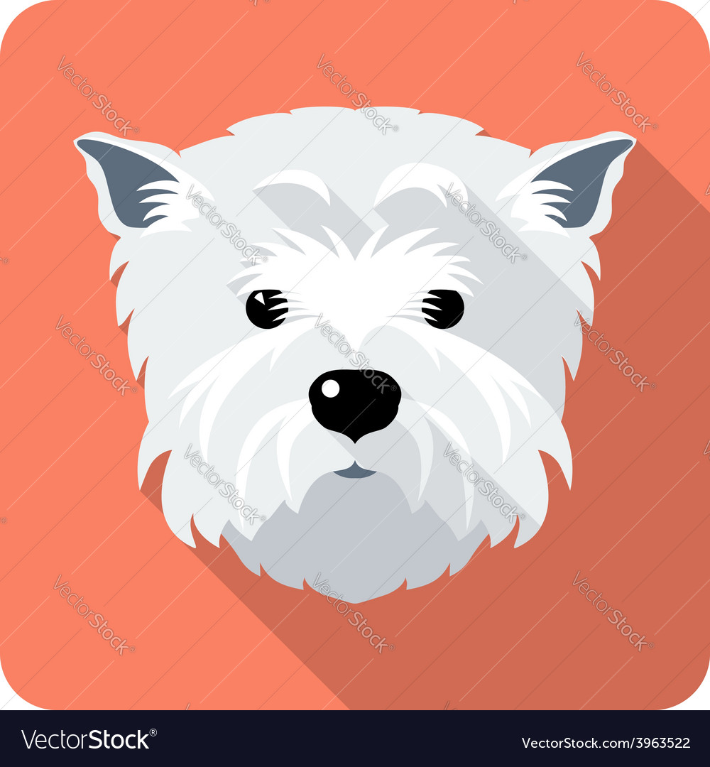 Dog west highland white terrier icon flat design vector | Price: 1 Credit (USD $1)
