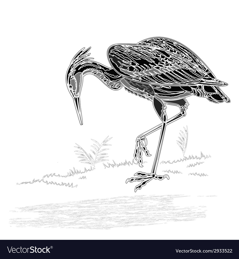 Heron bird vintage engraving vector | Price: 1 Credit (USD $1)