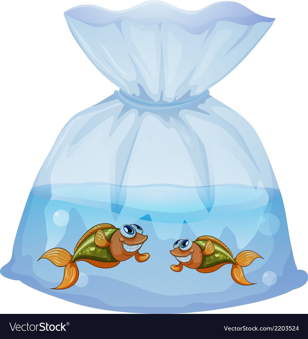 A pouch with fishes vector | Price: 1 Credit (USD $1)