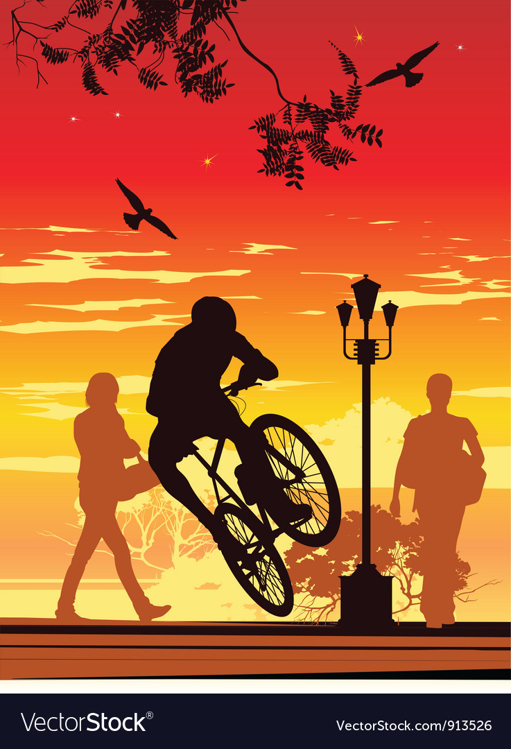 Bike ride in park vector | Price: 1 Credit (USD $1)